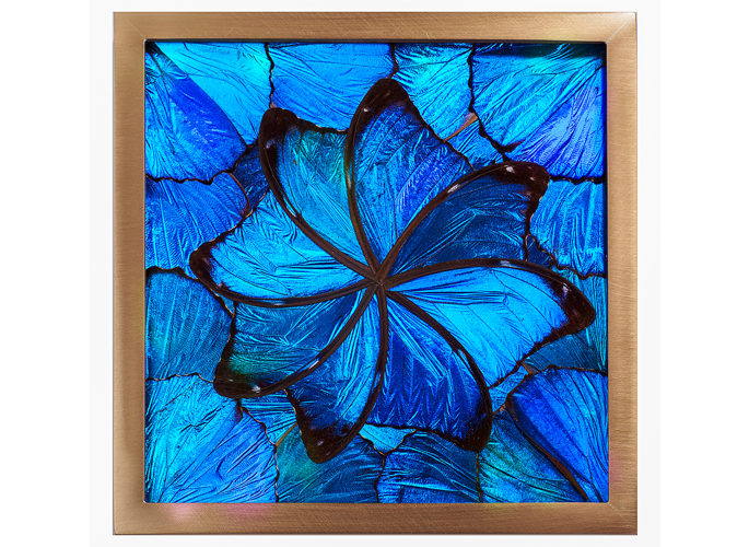 architectural glass panel with bright blue butterfly wing pattern