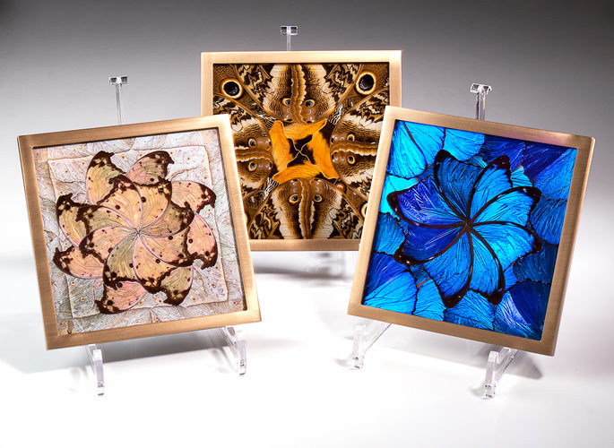 architectural glass panelling featuring butterfly wing patterns